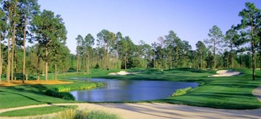 Myrtle beach newspaper golf coupons